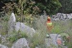 Poszukiwania Bobrowo/Złocieniec - 06.07.2015