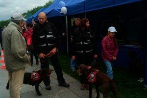 Psy ratownicze na Dnia Weterana