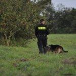 Psy ratownicze i policyjne