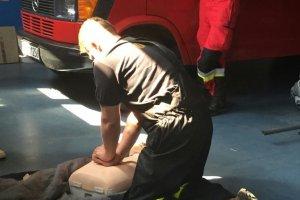 Pierwsza pomoc dla przewodników psów policyjnych