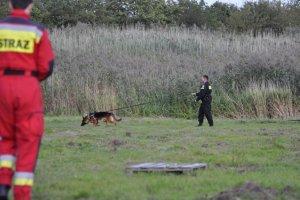 Ćwiczenia służb ratowniczych z wykorzystaniem psów policyjnych i ratowniczych