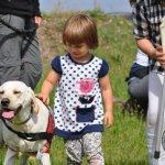 Pies przyjaciel dziecka 2015/2016