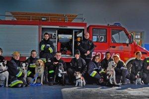 Psy ratownicze w Kurierze Szczecińskim