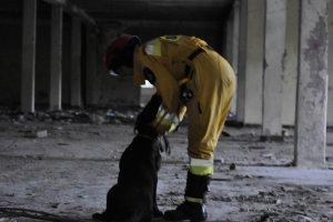 Zgrupowanie szkoleniowe dla przewodników psów i operatorów urządzeń lokalizacyjnych