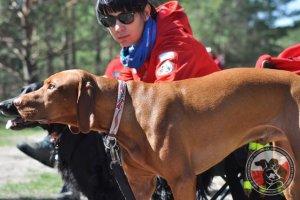 Egzaminy psów ratowniczych w Żaganiu zakończone dużym sukcesem  (20/22.04.2016)