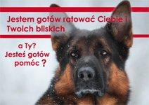 1% dla psów ratowniczych