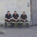 Psy Ratownicze w Szczecinie