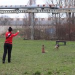 Ćwiczenia w Poznaniu