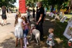 Festyn rodzinny w Starym Czarnowie z okazji 100-lecia odzyskania niepodległości.