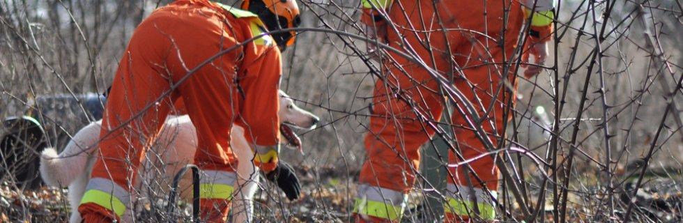 Pionierzy w psim ratownictwie! Drugi w województwie certyfikowany pies gruzowiskowy!