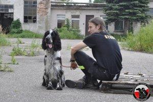 Akcja poszukiwawcza w Lubiechowie