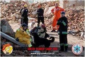 Zachodniopomorskie Psy Ratownicze na ORLEN SEARCH  CAMP 2014